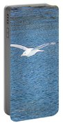 Flying Free Portable Battery Charger