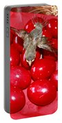 Flying Over Red Eggs Portable Battery Charger