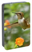 Flying Scintillant Hummingbird Portable Battery Charger
