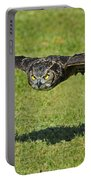 Flying Tiger... Portable Battery Charger