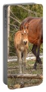 Foal Spot Portable Battery Charger