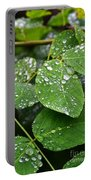 Foliageworks 2 Portable Battery Charger