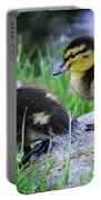 Follow The Leader Ducky Style Portable Battery Charger