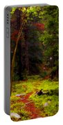 Follow The Trail Portable Battery Charger