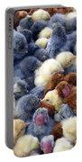 For Sale Baby Chicks Portable Battery Charger
