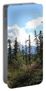 For Spacious Skies Portable Battery Charger
