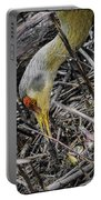 foraging for wild edibles Sandhill Crane Portable Battery Charger