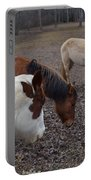 Foraging Horses Portable Battery Charger