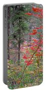Forest Autumn Portable Battery Charger
