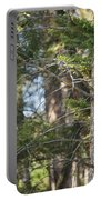 Forest Black Bear Cub Portable Battery Charger