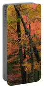 Forest Blush Portable Battery Charger