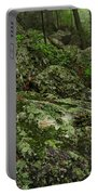 Forest Boulder Field Portable Battery Charger