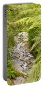 Forest Creek In Lush Rainforest Jungle Of Nz Portable Battery Charger