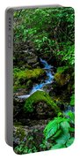Forest Creek Portable Battery Charger