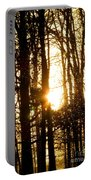 Forest Flurry Lightscape  Portable Battery Charger