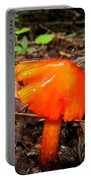 Forest Fungi Flare Portable Battery Charger