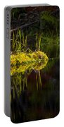 131005b-044 Forest Marsh 1 Portable Battery Charger
