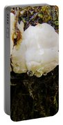 Forest Mushroom Trio Portable Battery Charger
