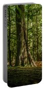 Forest Of Cathedral Grove Collection 1 Portable Battery Charger