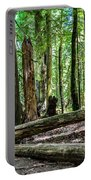 Forest Of Cathedral Grove Collection 2 Portable Battery Charger