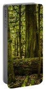 Forest Of Cathedral Grove Collection 3 Portable Battery Charger