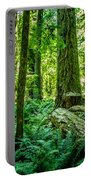 Forest Of Cathedral Grove Collection 8 Portable Battery Charger