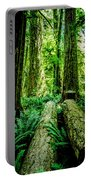 Forest Of Cathedral Grove Collection 9 Portable Battery Charger