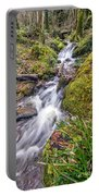 Forest Rapids Portable Battery Charger