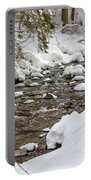Winter Forest River Portable Battery Charger