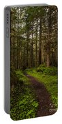 Forest Serenity Path Portable Battery Charger