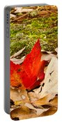 Forest Still Life 5 Portable Battery Charger