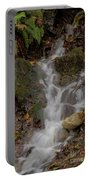 Forest Stream Cascade Portable Battery Charger
