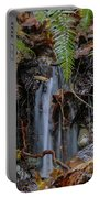 Forest Streamlet Portable Battery Charger