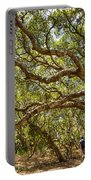 Forest Stroll - The Magical And Mysterious Trees Of The Los Osos Oak Reserve. Portable Battery Charger