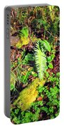 Forest Wetlands IIi Portable Battery Charger