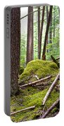 Forest With Moss-covered Rocks Along John's Lake Trail In Glacier Np-mt Portable Battery Charger