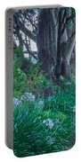 Forested Path Portable Battery Charger