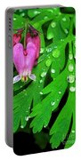 Formosa Bleeding Heart On Ferns Portable Battery Charger