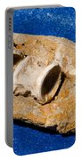 Fossil Fish Vertebrae In Rock Portable Battery Charger