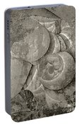 Fossilized Shell - B And W Portable Battery Charger