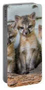 Four Fox Kits Portable Battery Charger