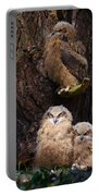 Four Owl Chicks In A Dark Forest Portable Battery Charger
