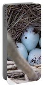 Four Red-winged Blackbird Eggs Portable Battery Charger by J McCombie