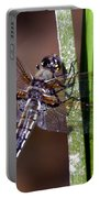 Four-spotted Skimmer Portable Battery Charger
