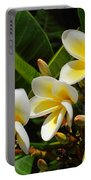 Four Summer Frangipanis Portable Battery Charger