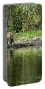 Fox At Water Hole Portable Battery Charger