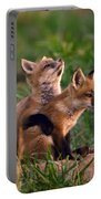 Fox Cub Buddies Portable Battery Charger by William Jobes