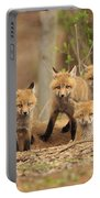 Fox Family Portrait Portable Battery Charger