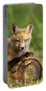 Fox Pup In The Morning Light Portable Battery Charger