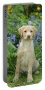 Fox Red Labrador Portable Battery Charger